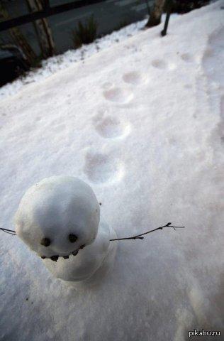 куда уходят снеговики
