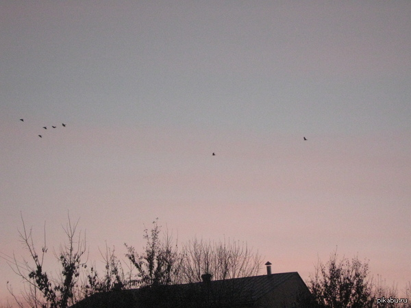На закате) Небо, когда иду с работы.