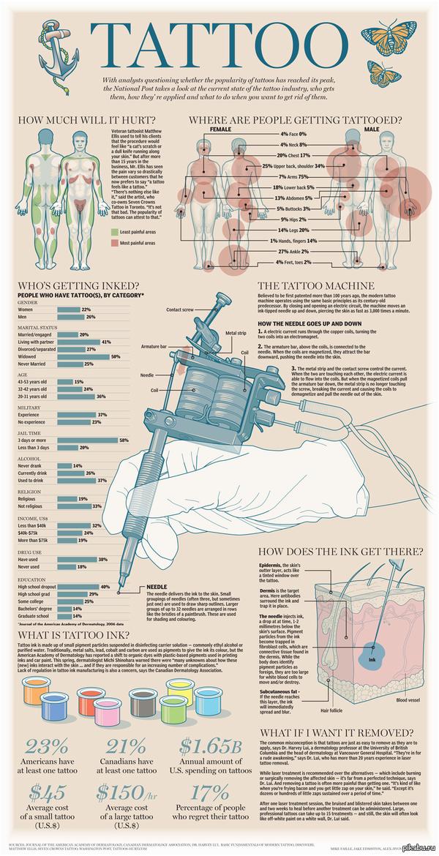 Татуировка Инфографика