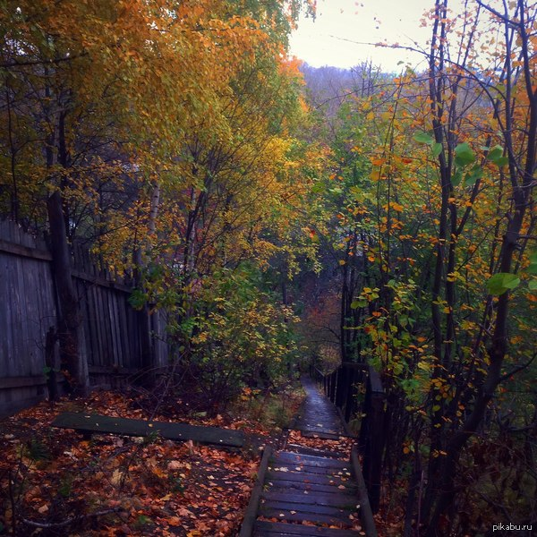 Осень. Фото сделано на айпад , обработка инстаграмм .