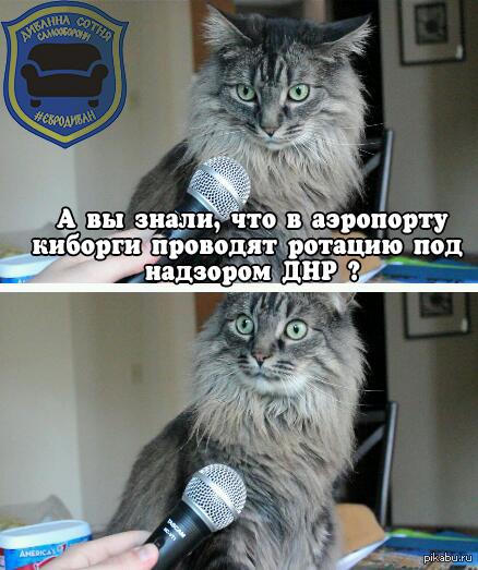 """Ротация """"воинов АТО"""" в аэропорту Донецка Крики """"позор"""" """"я не верю"""" """"нам врали"""" """"не может быть"""" """"фэйк"""" - реакция на видео ротации в группе сторонников майдана /uarevo вконтакте"""