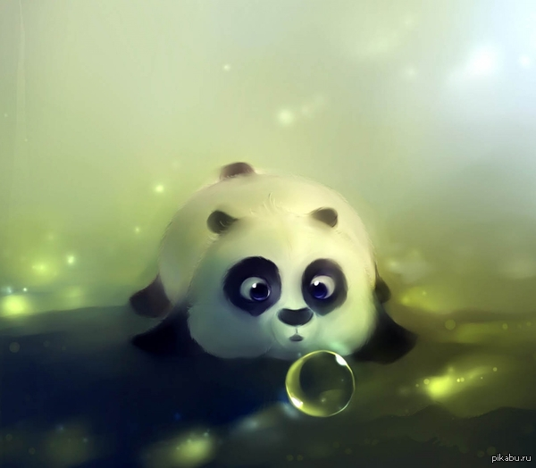 panda pictures hd wallpapers - photo #3