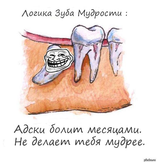 Зуб мудрости очень логичен