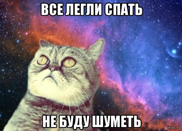 Познавший кот. В комментах еще.