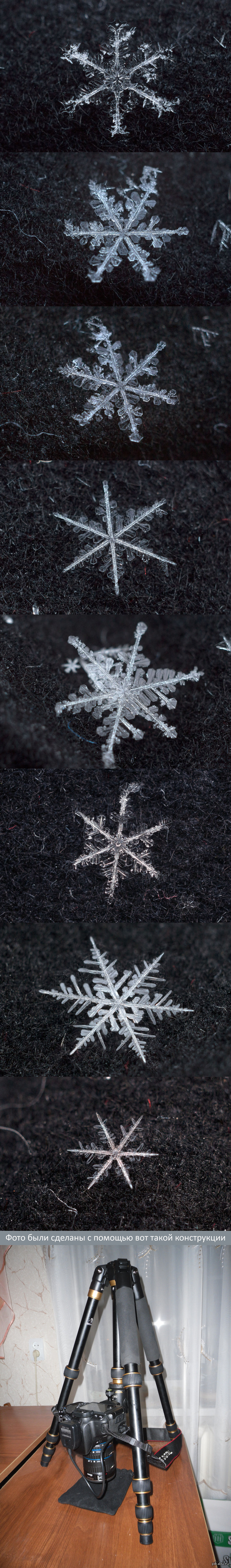Снежинки макро, часть 2