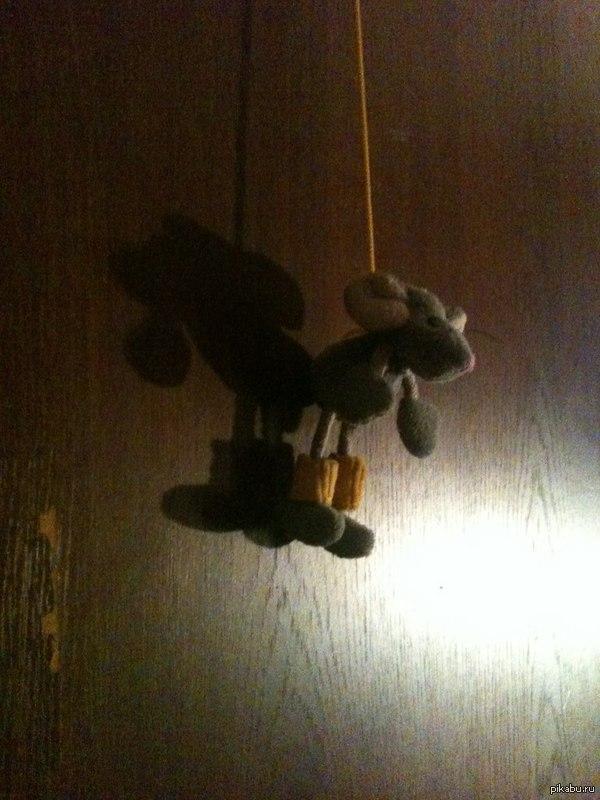 Суицидальная мышь. Мама друга повесила мышь, чтобы кошка игралась.