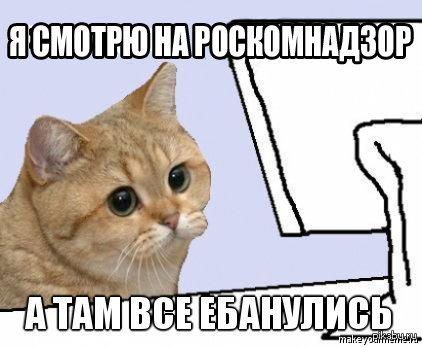 Роскомнадзор внесет в черный список сразу 136 пoрносайтов. Пруф - http://izvestia.ru/news/585309
