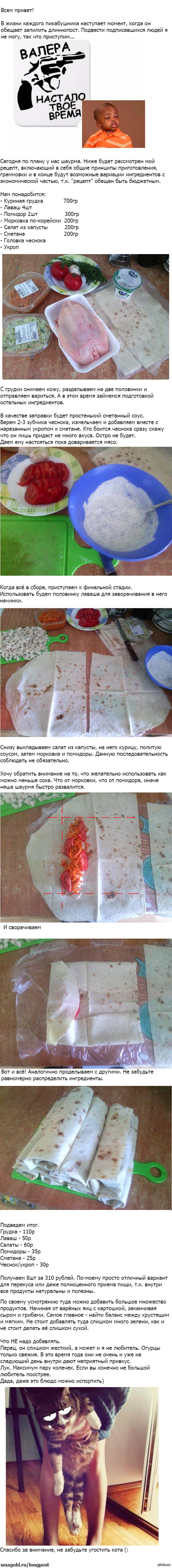 Рецепт шаурмы по просьбам подписавшихся (: Кот прилагается.