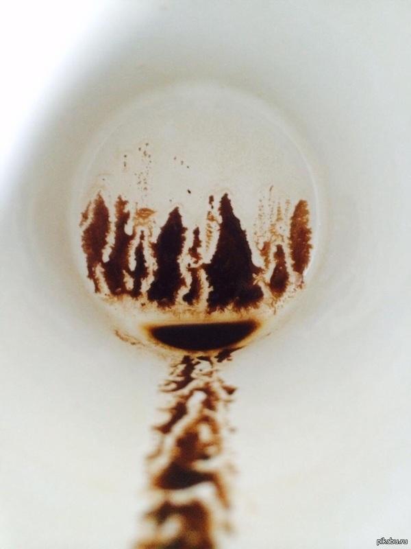 Дно этой кофейной чашки выглядит как дорога в лес.