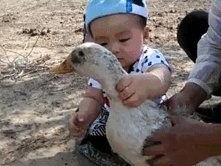 Вы когда-нибудь пробовали утку по пекински?