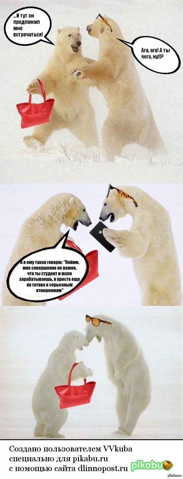 Некоторые медведицы такие стервы...