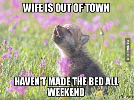 Жена уехала из города не заправлял постель все выходные