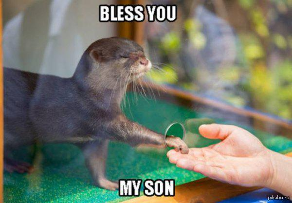 Благославляю тебя, сын мой
