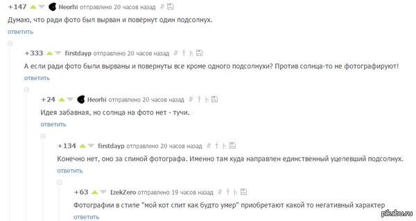 "Суровый фотограф <a href=""http://pikabu.ru/story/odinokiy_buntar_quotmne_ne_nuzhno_nikakoe_solntsequot_3565540#comment_51311088"">#comment_51311088</a>"