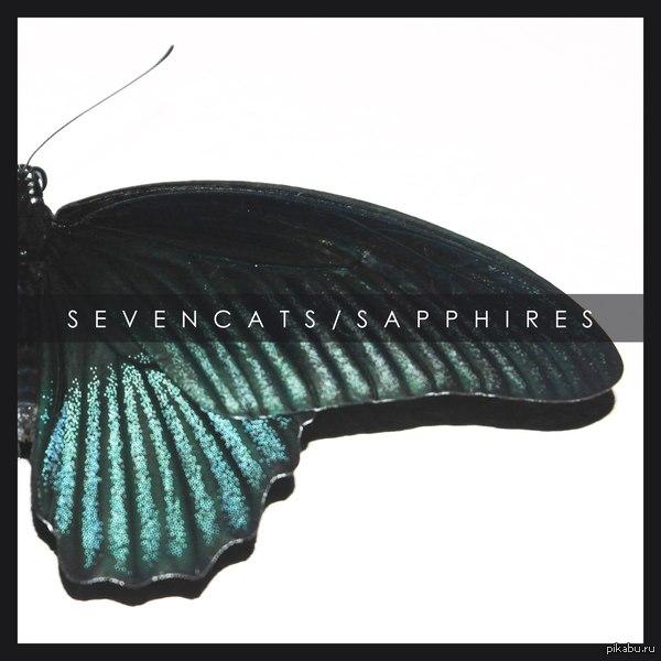 Пятничное моё. Хочу поделиться новой песней своей группы. SevenCats - Sapphires. Ссылка для прослушивания:  https://soundcloud.com/sevencats-1/seven-cats-sapphires  Скачать бесплатно можно тут:  https://sevencats.bandcamp.com/track/sapphires