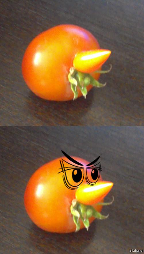 Носатый и усатый Вот такой помидор сегодня сорвал