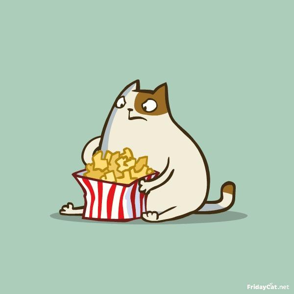 Пятничный Котик №5 Больше котиков на [fridaycat.net](http://fridaycat.net/)