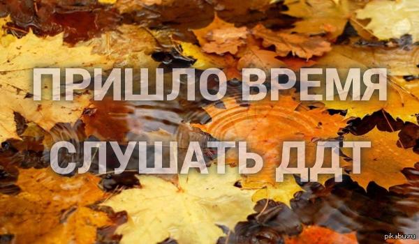 картинки наступила осень