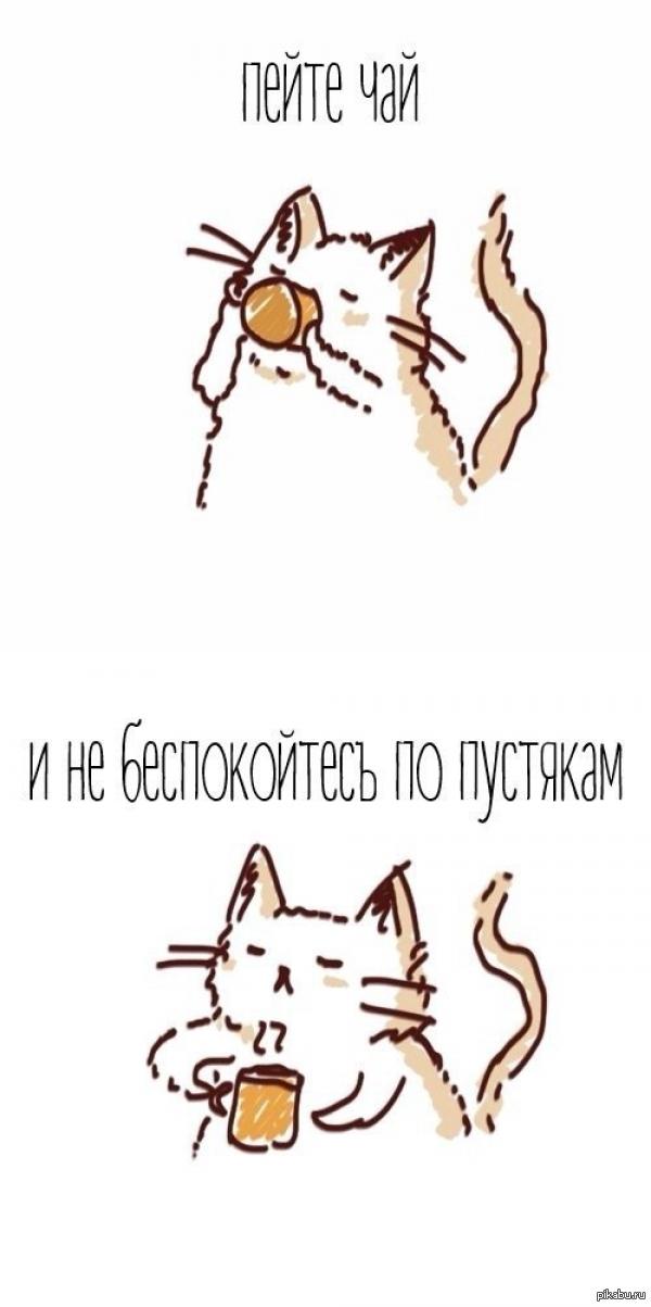 котик картинки нарисованные