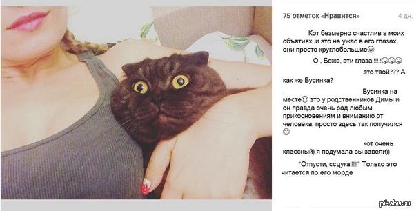 Кот безмерно счастлив в моих объятиях..