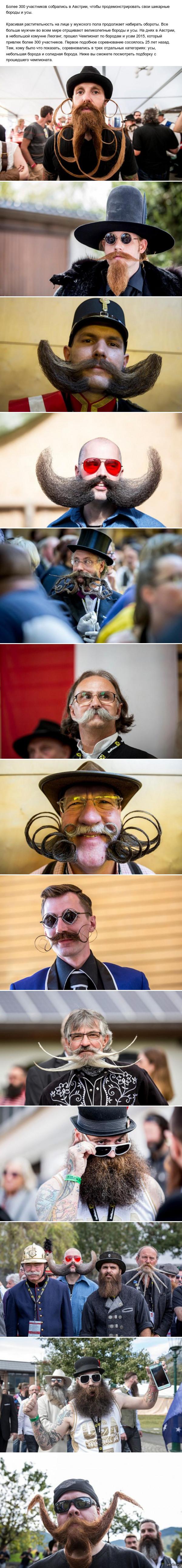 В Австрии завершился Чемпионат мира по бородам и усам 2015