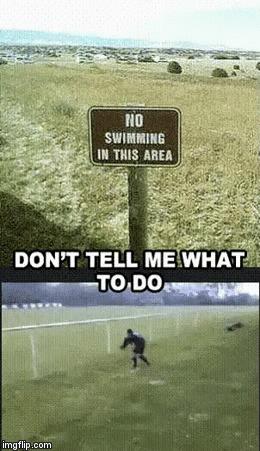 -Только не  указывай мне что делать!