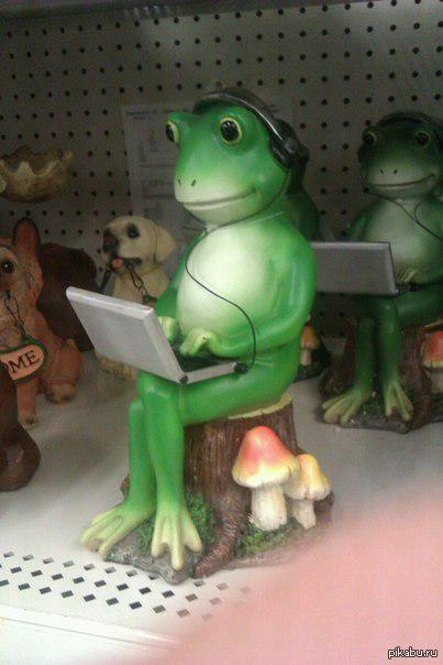 А у лягушки хуй зелный