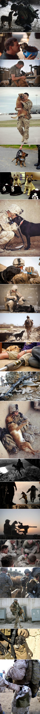 Military то, что я люблю - мужчины в форме и собаки^^