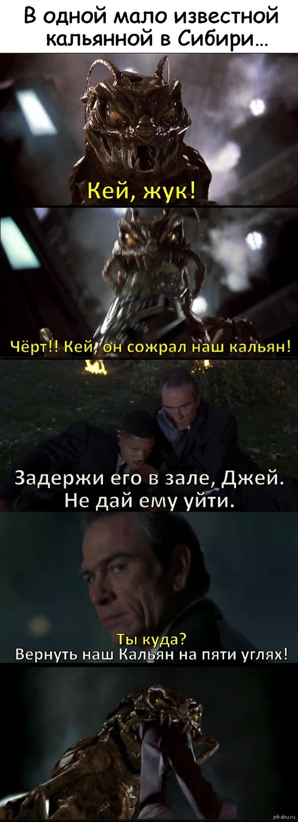 """Когда жук очень большой К посту <a href=""""http://pikabu.ru/story/nelovkiy_moment_kogda_v_kalyannoy_zhuk_3779664"""">http://pikabu.ru/story/_3779664</a>"""