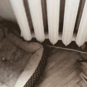 когда включили отопление)
