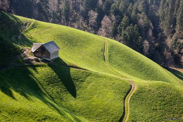 Дом для любителей одиночества