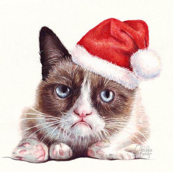 Всем, кто отмечает Новый Год на работе - спокойной смены. Новый Год, Работа, Grumpy, GrumpyCat, Кот
