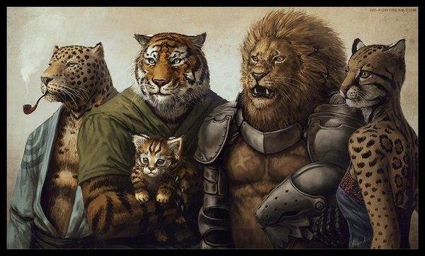 tigers vs warriors - 1240×748