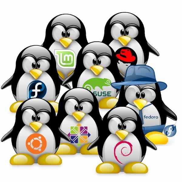 Linux'ов так много, а я один! Linux, Дистрибутивы, Описание, Ветвление, Debian, RedHeta, Gentoo, Arch linux, Длиннопост