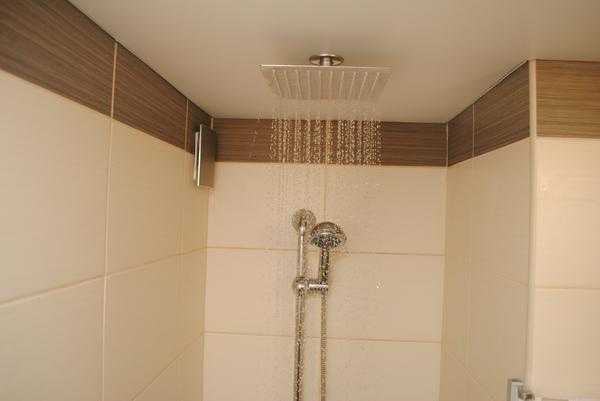 """""""Тропический"""" душ без особых затрат. Моё, Тропический душ, Своими руками, Ванная комната, Душ, Россия, Омск, Длиннопост"""