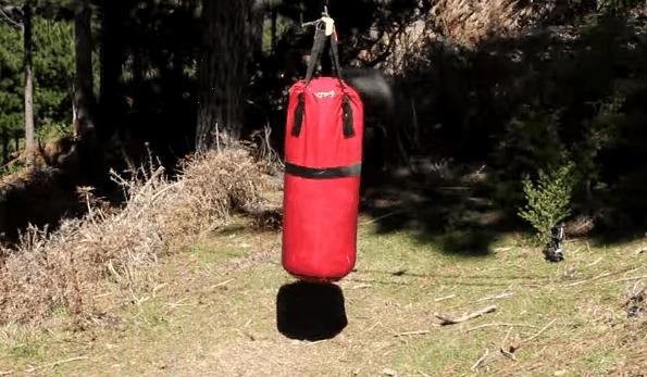 Боксерская груша задирает бедное животное. Бараны, Angry ram, Гифка, Груша, Бой