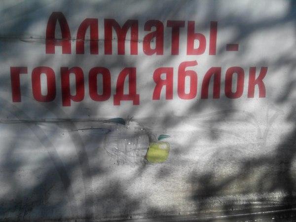 Город яблок Алматы, Яблоки, Баннер