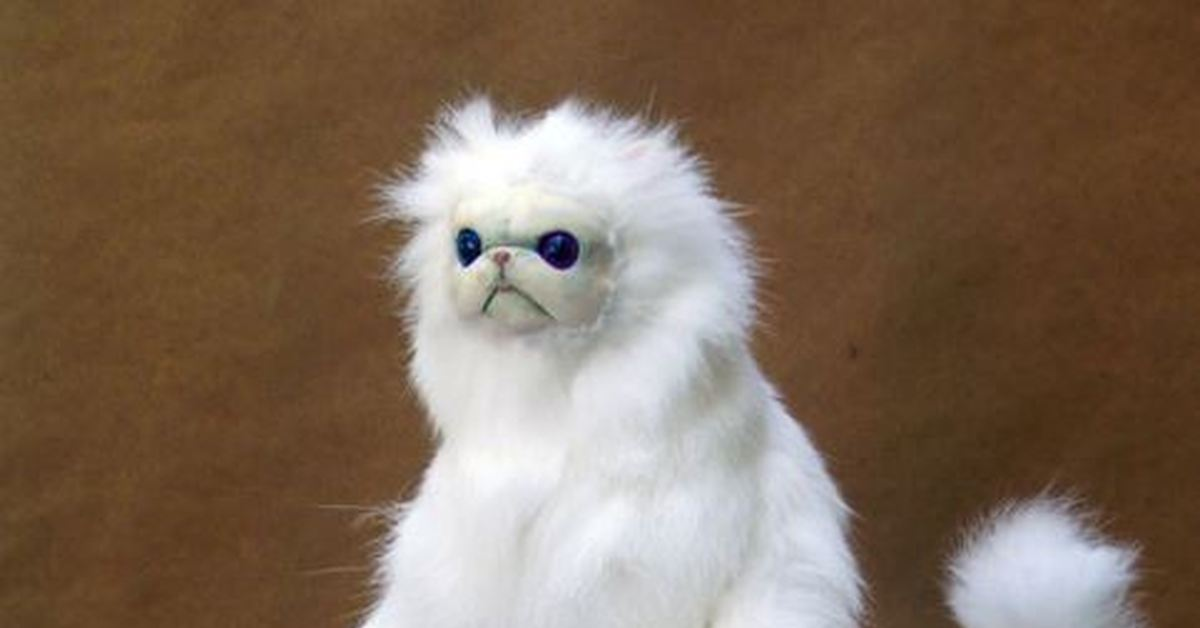 Чучело кот мем