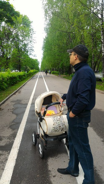 Быдло мать или бараны на велодорожках веложорожка, бараны, пешеход, быдло, яжмать