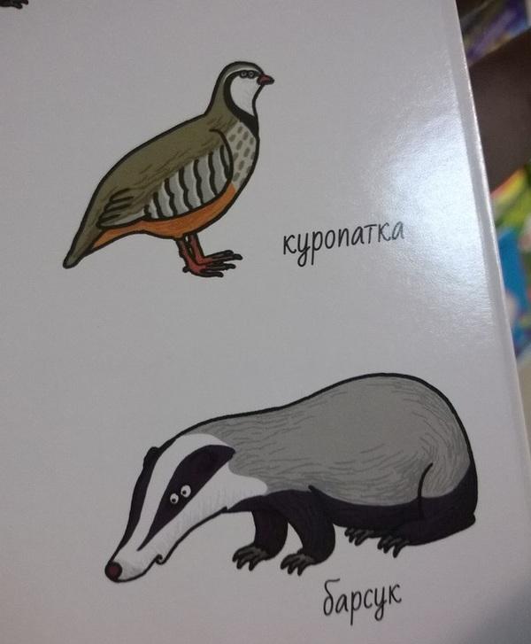 Мне кажется, что-то не так с этими животными. Книги, Животные, Детский мир, Длиннопост, Глаза