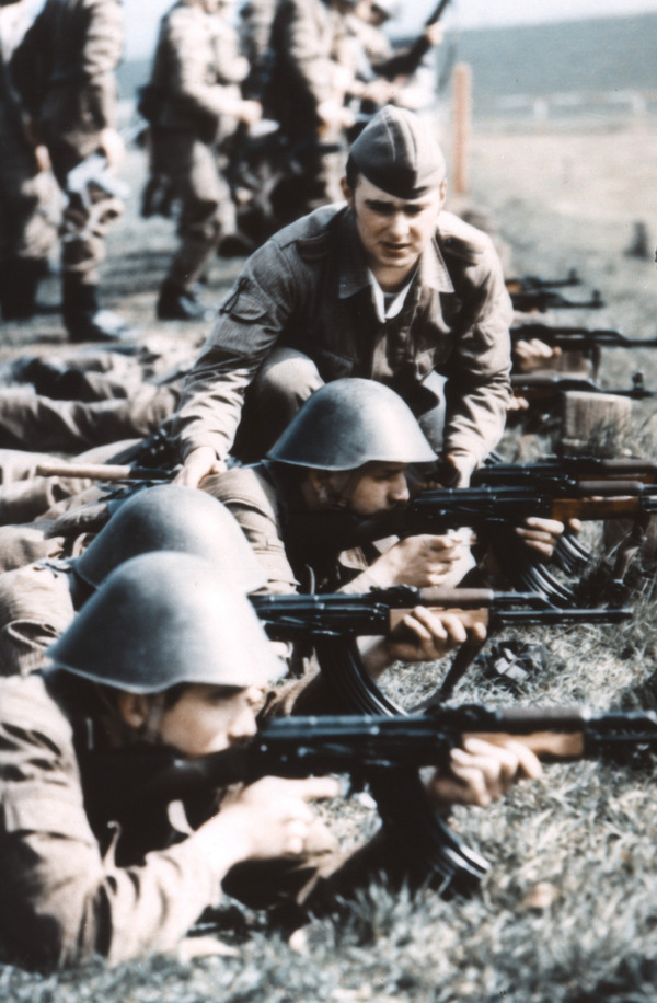 The armed forces of the Warsaw Pact. Volksarmie.battalion, Bataillon, combat, consisted, regiment, support, material, troops, Sicherstellung, Volksarmei, materieller, defense, Army, mobilization, composition, very, one, differences, Each, divisions