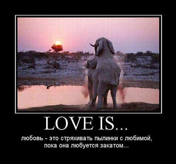 картинки с приколами про любовь