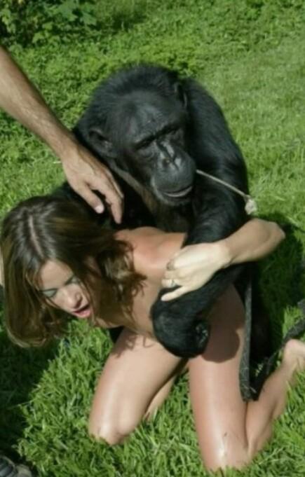Секс женщены с обезьяной