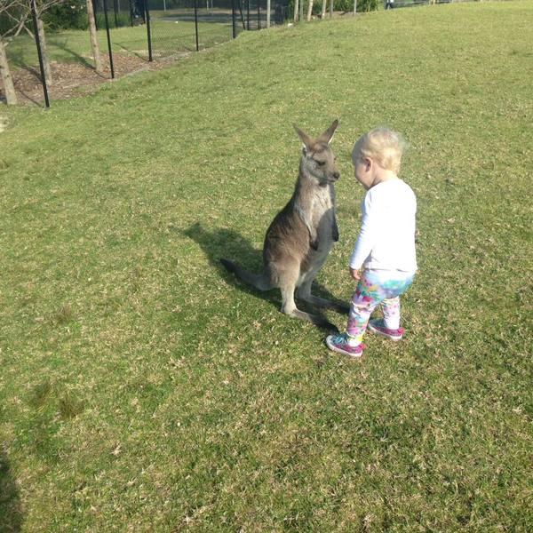 """"""" - Взял племянника в зоопарк, не перестаю удивлятся тому как быстро он находит друзей"""""""