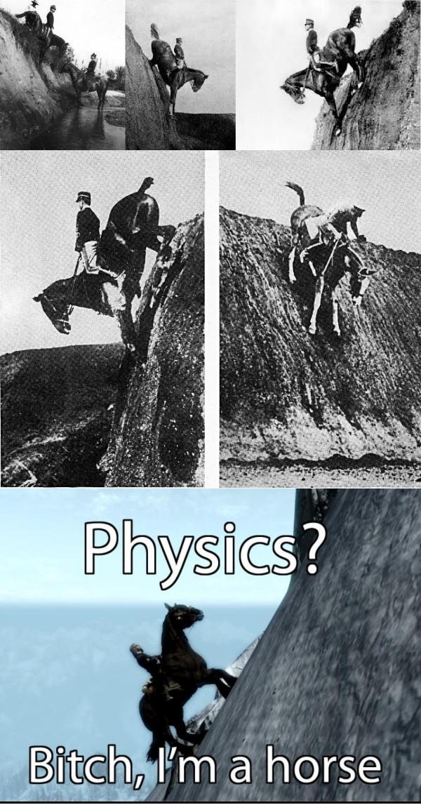 Федерико Каприлли недоумевает чем всем неугодила физика Skyrim Skyrim, Federico Caprilli, Лошадь