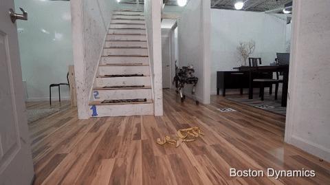 Boston Dynamics: новый робот и новые издевательства Boston Dynamics, Робот, терминатор, восстание машин, гифка, видео