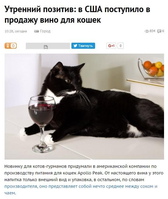 В очередь сильные и независимые!))) кот, алкоголь, Независимая