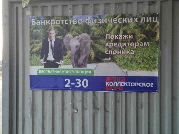 Покажи кредиторам слоника