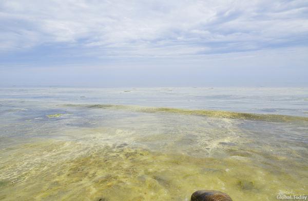 Байкал превращается в грязное море