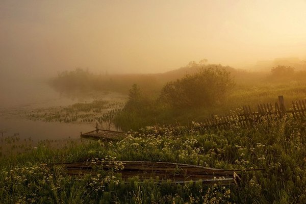 Усвяча — река в Псковской и Витебской области, правый приток Западной Двины. Река, Тётя-Мотя